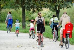Bike share the road